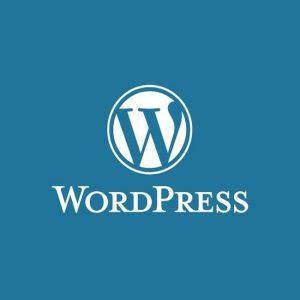 Wordpress Care & Maintenance Plans